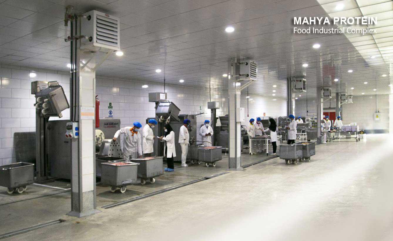 Hamburger and Kebab production line